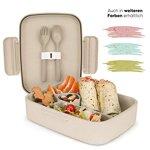 Ecolina ♻ Bento Box mit 5 praktischen Fächern - Eco-Lunchbox - Nachhaltig und schadstofffrei - Perfekt für Kinder mit großem Hunger (1,3 l Volumen) (Beige)