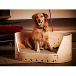 Dogs Heaven 84 - exklusives Hundebett aus Holz, 299,00 €