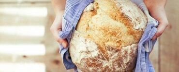Brotkasten ohne Plastik